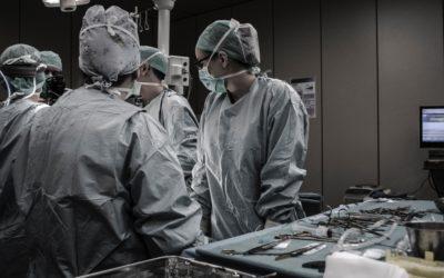 Mit gefüllten Nährstoffspeichern lässt sich erfolgreicher operieren